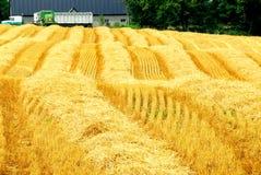 Campo de granja de la cosecha foto de archivo libre de regalías