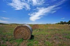 Campo de granja en Australia del oeste Fotos de archivo