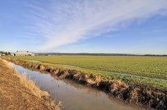Campo de granja en el invierno fotos de archivo