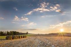 Campo de granja en invierno foto de archivo libre de regalías