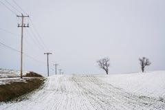 Campo de granja nevado, cerca de la arboleda de la primavera, Pennsylvania Imagen de archivo libre de regalías