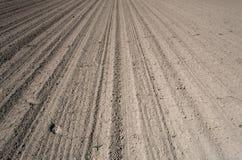 Campo de granja preparado para plantar con los pasos Foto de archivo libre de regalías