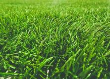 Campo de hierba artificial imagenes de archivo
