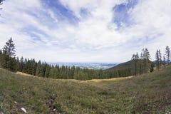 Campo de hierba con el bosque y la montaña Fotos de archivo