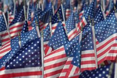Campo de banderas Fotografía de archivo