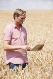 Campo de Inspecting Crops In del granjero usando la tableta de Digitaces Fotografía de archivo