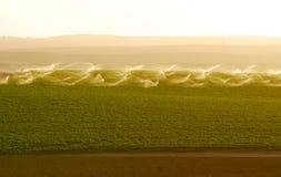 Campo de irrigação da batata Fotos de Stock