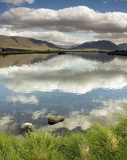 Campo de Islandia Fotografía de archivo