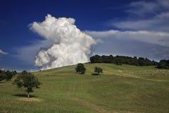 Campo de Italy Foto de Stock Royalty Free