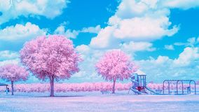 Campo de jogos infravermelho em um ensolarado, dia do parque de verão fotografia de stock royalty free