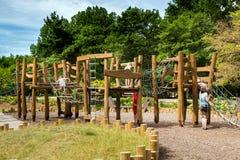 Campo de jogos de madeira ecológico imagens de stock royalty free