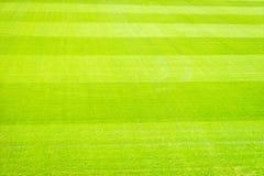 Campo de jogos novo da textura nova natural da grama verde Imagem de Stock Royalty Free