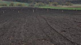 Campo de la agricultura preparado para el cultivo almacen de video