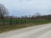 Campo de la alfalfa en el camino de campo Imagenes de archivo