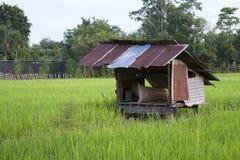 Campo de la cabaña Foto de archivo