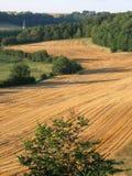 Campo de la cebada en Francia norteña Imagen de archivo
