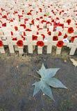 Campo de la conmemoración Fotos de archivo
