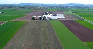 Campo de la fresa, contra el contexto de un complejo grande del calor Vuelo sobre la zona agrícola almacen de video