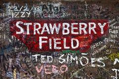Campo de la fresa en Liverpool Imagenes de archivo