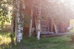 Campo de la hierba de la puesta del sol Fotos de archivo libres de regalías