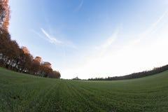 Campo de la hierba en puesta del sol Imagen de archivo libre de regalías