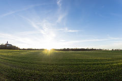 Campo de la hierba en puesta del sol Fotografía de archivo libre de regalías