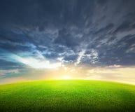 Campo de la hierba verde y del cielo Foto de archivo