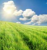 Campo de la hierba verde y del cielo nublado azul Foto de archivo libre de regalías