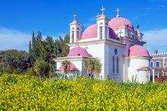 Campo de la iglesia ortodoxa y de la mostaza cerca del mar de Galilea Imagen de archivo