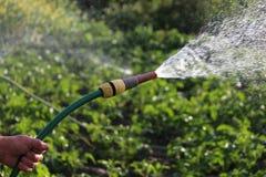 Campo de la irrigación Fotos de archivo
