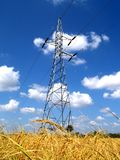 Campo de la línea eléctrica y del arroz Fotografía de archivo