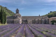 ¡Campo de la lavanda de Provence de la abadía de Senanque! Imagen de archivo