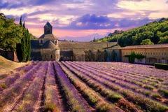 Campo de la lavanda en el monasterio de Senanque, Provence, Francia Fotografía de archivo libre de regalías