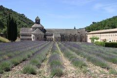 Campo de la lavanda en la abadía de Sénanque Imagenes de archivo