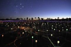Campo de la luz del artista Bruce Munro