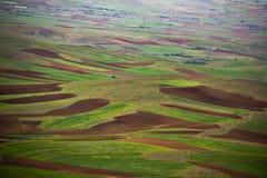 Campo de la naturaleza del color Imagen de archivo