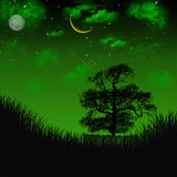 Campo de la noche Libre Illustration