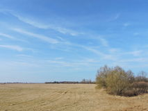 Campo de la primavera y cielo nublado hermoso Imagen de archivo libre de regalías