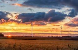 Campo de la puesta del sol y de trigo con el molino de viento en fondo Fotos de archivo libres de regalías