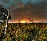 Campo de la salida del sol Fotografía de archivo libre de regalías