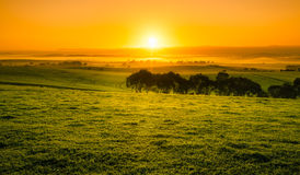 Campo de la salida del sol fotos de archivo libres de regalías
