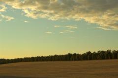 Campo de la tarde Foto de archivo
