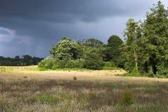 Campo de la tormenta fotografía de archivo