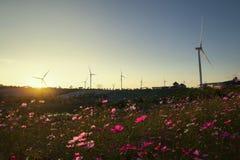 Campo de la turbina de viento y campo de flor fotos de archivo