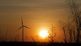Campo de la turbina y de hierba de viento de la silueta con crepúsculo y puesta del sol almacen de video