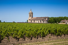 Campo de la uva e iglesia vieja detrás de Burdeos cercano Fotos de archivo