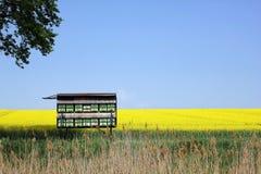 Campo de la violación de semilla oleaginosa con la colmena Imagen de archivo libre de regalías