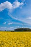 Campo de la violación y turbina de viento Fotografía de archivo
