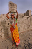 Campo de ladrillo en la Bengala-India del oeste Imagenes de archivo