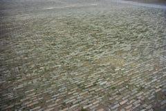Campo de ladrillo - la ciudad Prohibida, Pekín, China Fotografía de archivo libre de regalías